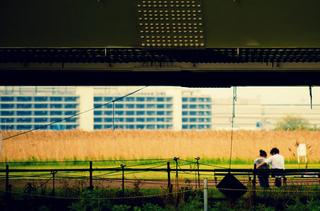 PP_koukashitano500.jpg.jpg